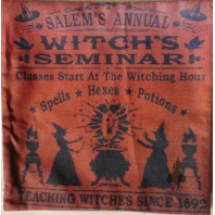 Orange SALEM Pillow Cushion Cover - Sabbath,  Witchcraft, Witch, Wiccan, Dark Mori, Halloween, Magic, Pagan