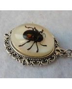 Beetle Taxidermy Necklace, Insect, Cabinet Of Curiosities, Oddities, Memento Mori