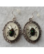 Beetles Taxidermy Earrings, Scarab, Beetle, Cabinet Of Curiosities, Memento Mori, Wedding, Macabre, Victorian, Gothic, Witch