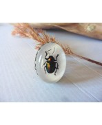 Steampunk Scarab Beetle Taxidermy Ring, Cabinet of Curiosities, Dark Forest Mori, Memento Mori