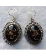 Scorpion Scorpio Taxidermy Earrings, Cabinet Of Curiosities, Memento Mori, Wedding, Macabre, Victorian, Gothic, Witch